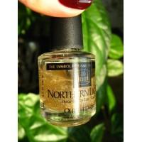 INM Northern Lights Hologram top coat / Голографическое покрытие для ногтей оттенок «Золото» INM
